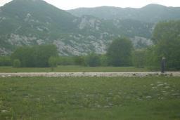 Земельный участок площадью 70000м2. Кривошие, 12км от Моринья. в Морине