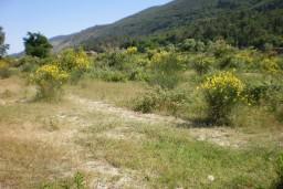 Земельный участок в Герцег-Нови – Суторина, площадью 2342м2. в Игало