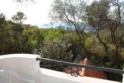 Вид на море. Черногория, Жанице / Мириште : Студия с балконом, 80 метров до моря