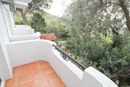 Балкон. Черногория, Жанице / Мириште : Студия для 3 человек с балконом, 80 метров до моря