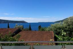 Вид на море. Черногория, Герцег-Нови : Студия Текома для двоих с балконом и видом на море