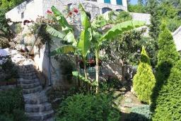 Территория. Черногория, Костаньица : Апартамент для 2 человек с отдельной спальней, садом и террасой, 10 метров до пляжа