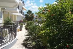 Территория. Черногория, Дженовичи : Апартамент в 100 метрах от пляжа с гостиной, тремя спальнями и террасой