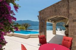 Бассейн. Черногория, Рисан : Роскошная вилла с бассейном и видом на море, 7 спален, барбекю, Wi-Fi