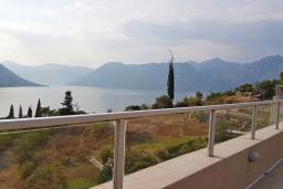 Вид на море. Черногория, Доброта : Современный апартамент с большой террасой с джакузи и видом на море, просторная гостиная, 2 спальни
