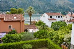 Вид на море. Черногория, Доброта : 2-х этажный апартамент с балконом с шикарным видом на залив, 30 метров до моря