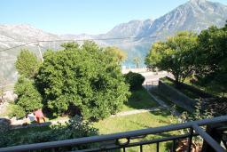 Вид на море. Черногория, Костаньица : Апартамент с отдельной спальней, с балконом с шикарным видом на залив, 10 метров до моря