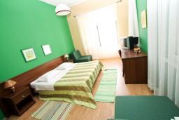 Спальня. Черногория, Рисан : Апартамент с отдельной спальней, с общей террасой, 30 метров до моря