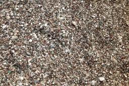 Пляж Бисерна Обала / Biserna Obala в Чани