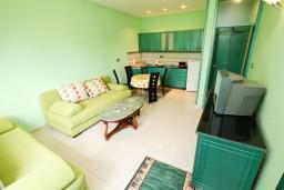 Гостиная. Черногория, Шушань : Апартамент для 2-4 человек, с отдельной спальней, ванная комната с джакузи