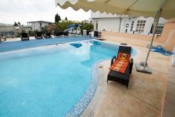 Бассейн. Черногория, Шушань : Апартамент для 2-4 человек, с отдельной спальней, терраса с бассейном
