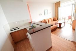 Кухня. Черногория, Ульцинь : Апартамент с отдельной спальней, с балконом с шикарным видом на море