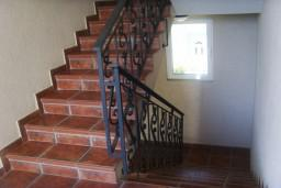 Лестница наверх. Racanovic 3* в Будве