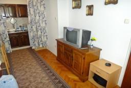 Гостиная. Черногория, Игало : Первый этаж дома с 2-мя отдельными спальнями, с уютной террасой в тени виноградника, Wi-Fi, стиральная машина, место для барбекю.