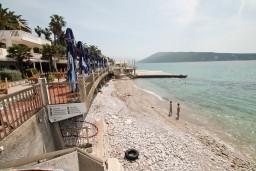 Ближайший пляж. Aleksandar 3* в Герцег Нови