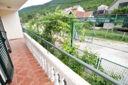 Балкон. Черногория, Герцег-Нови : Апартамент для 2-4 человек, с отдельной спальней