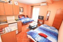 Студия (гостиная+кухня). Черногория, Доня Ластва : Студия для 4 человек, с балконом, 50 метров до моря