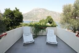 Терраса. Черногория, Столив : Студия с балконом с видом на залив, возле пляжа
