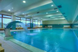 Бассейн. Ski Hotel 4* в Жабляке