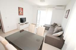 Гостиная. Черногория, Дженовичи : Современный апартамент с отдельной спальней, с балконом с видом на море, 20 метров до пляжа