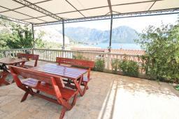 Черногория, Моринь : Студия для 2-х человек, с террасой с видом на море, 50 метров до пляжа