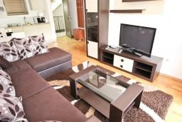 Living room. Montenegro, Przno & Milocer : Apartment with 1 bedroom in Przno & Milocer