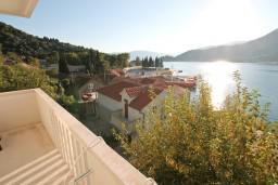 Черногория, Лепетане : Апартамент с отдельной спальней, с балконом с шикарным видом на море, 40 метров до пляжа