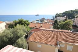 Seaview. Montenegro, Petrovac : Apartment with 1 bedroom in Petrovac