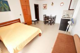 Студия (гостиная+кухня). Черногория, Риека Режевичи : Студия для 2-3 человек, с террасой с видом на море
