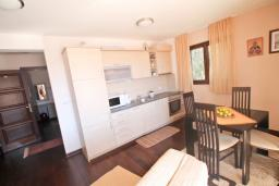 Living room. Montenegro, Petrovac : Apartment with 1 bedroom in Petrovac