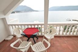 Вид на море. Черногория, Герцег-Нови : Апартамент с отдельной спальней, с балконом с шикарным видом на море, возле пляжа