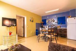 Кухня. Черногория, Дженовичи : 3-х этажная вилла в Дженовичи с бассейном, джакузи и видом на море, с 7 отдельными спальнями, 5 ванными комнатами, большой террасой, летней кухней, местом для барбекю, парковкой, Wi-Fi