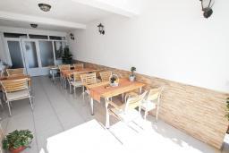 Территория. Черногория, Святой Стефан : Вилла в Святом Стефане с 8 спальнями, с 5 ванными комнатами, с  2 террасами и 3 балконами с шикарным видом на море, с бассейном, с местом для барбекю, несколько парковочных мест, бесплатный Wi-Fi