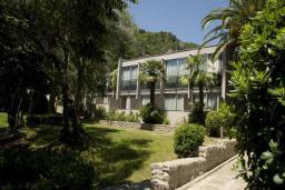 Фасад дома. Черногория, Бечичи : Двухместный номер в Tara Magnolia Villas