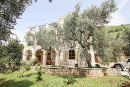 Территория. Черногория, Риека Режевичи : 3-х этажный дом с 4 отдельными спальнями, бассейном, большим садом, террасой с видом на море, местом для барбекю, Wi-Fi