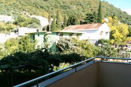 Вид. Черногория, Петровац : Апартамент с большой террасой и видом на сад