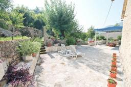 Терраса. Черногория, Зеленика : 2-х этажный, каменный дом с гостиной, столовой с кухней, с 2-мя отдельными спальнями, с ванной комнатой, с большой террасой