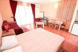 Студия (гостиная+кухня). Черногория, Игало : Уютная студия для 2-3 человек, с балконом с видом на море