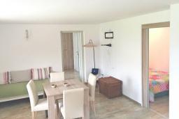 Гостиная. Черногория, Столив : Этаж дома в Которе (Столив), с 2-мя отдельными спальнями, с большой гостиной, с зеленым двориком, с террасой, стиральная машина, Wi-Fi, несколько парковочных мест, 100 метров до пляжа.