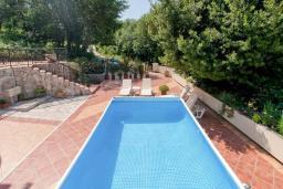 Бассейн. Черногория, Герцег-Нови : Вилла с бассейном, гостиной, четырьмя спальнями, двумя ванными комнатами.