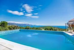 Бассейн. Черногория, Кримовица : Вилла с бассейном и шикарным видом на море, гостиная, 4 спальни, 3 ванные комнаты, терраса для отдыха, Wi-Fi