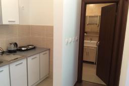 Кухня. Черногория, Рафаиловичи : Апартамент в 150 метрах от пляжа, с гостиной и отдельной спальней