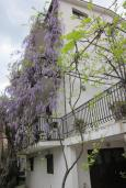 Фасад дома. Черногория, Будва : Четырехэтажный дом с двумя гостиными, двумя кухнями, 6 спален, 6 ванных комнат, гараж, сауна