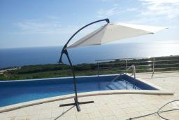 Swimming pool. Montenegro, Krimovica : Villa with 4 bedrooms in Krimovica for 7 guests