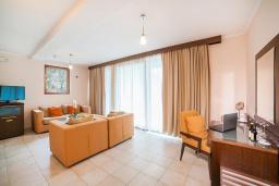 Гостиная. Черногория, Ораховац : Люкс с одной спальней и видом на горы