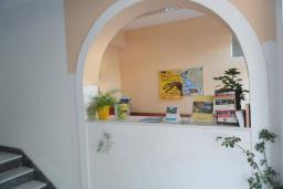 Ресепшн. Rio Rooms 3* в Будве