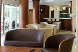 Кафе-ресторан. Del Mar 4* в Петроваце