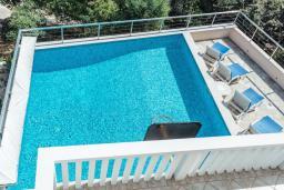 Бассейн. Черногория, Герцег-Нови : Вилла с бассейном и шикарным видом на море, большая гостиная, 3 спальни, 3 ванные комнаты, дворик, парковка, Wi-Fi