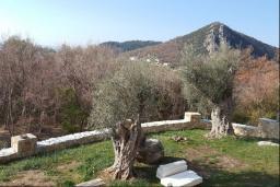 Территория. Черногория, Булярица : Уютная вилла с зеленой территорией, 3 спальни, 3 ванные комнаты, парковка, Wi-Fi