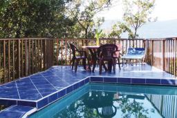 Бассейн. Черногория, Герцег-Нови : Прекрасный дом с бассейном и двориком, 6 спален, 2 ванные комнаты, парковка, Wi-Fi